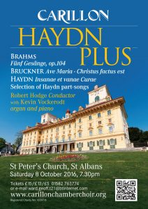 Haydn Plus Flyer